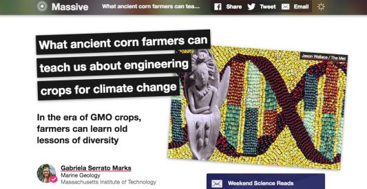 massive corn farmers