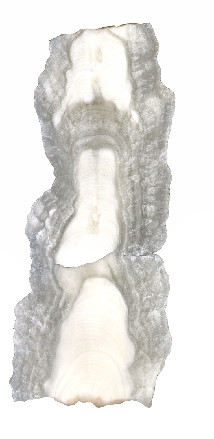 cross section of stalagmite